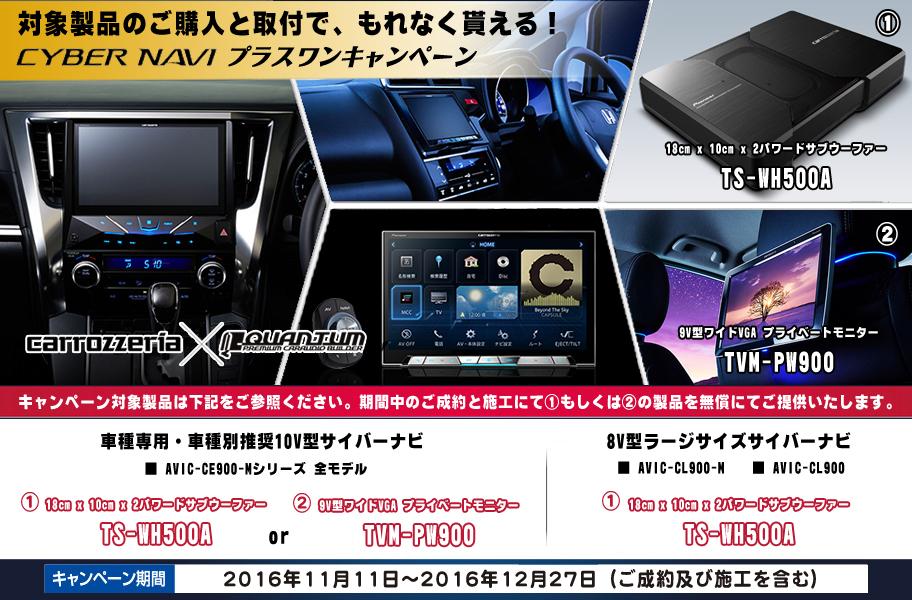 cyber_campaign